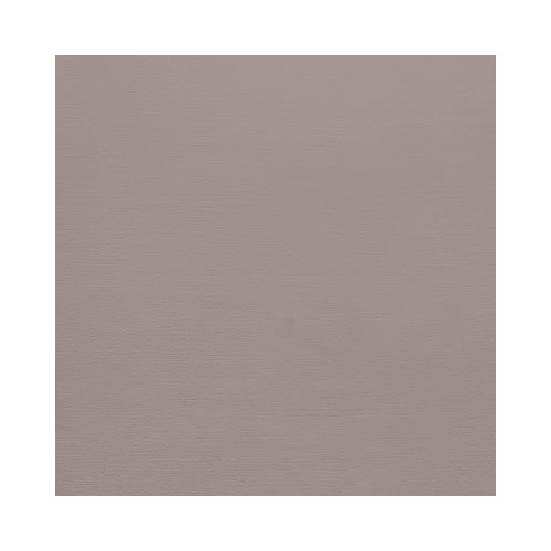 AC Cardstock 12x12 - Nickel